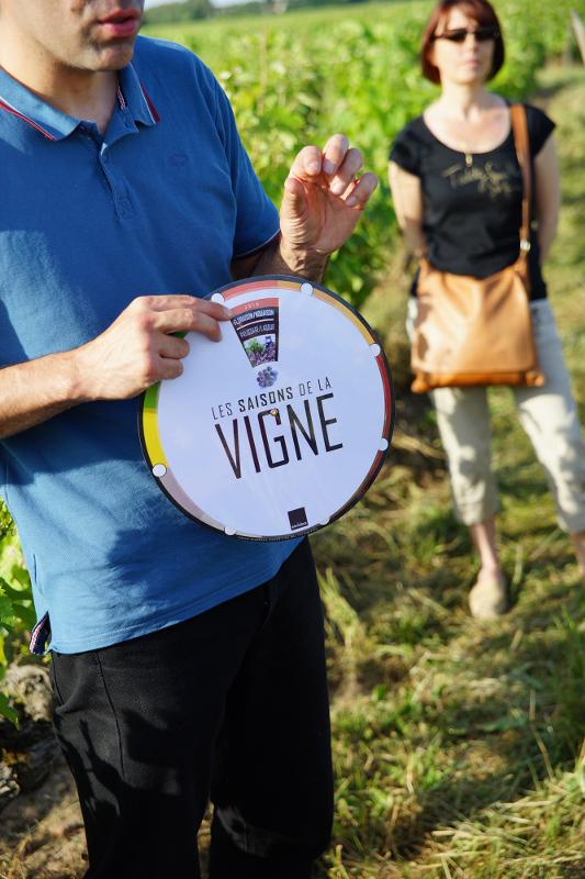 Vinoloire Wine-tours-4