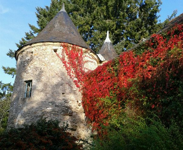 Château de Cinq-Mars et Parc-9