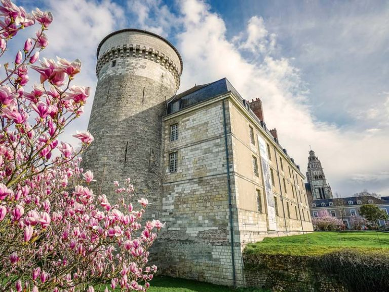 Château de Tours-1
