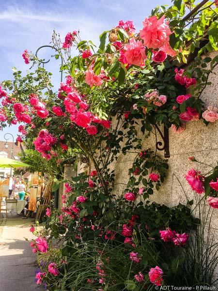 Festival des roses-4