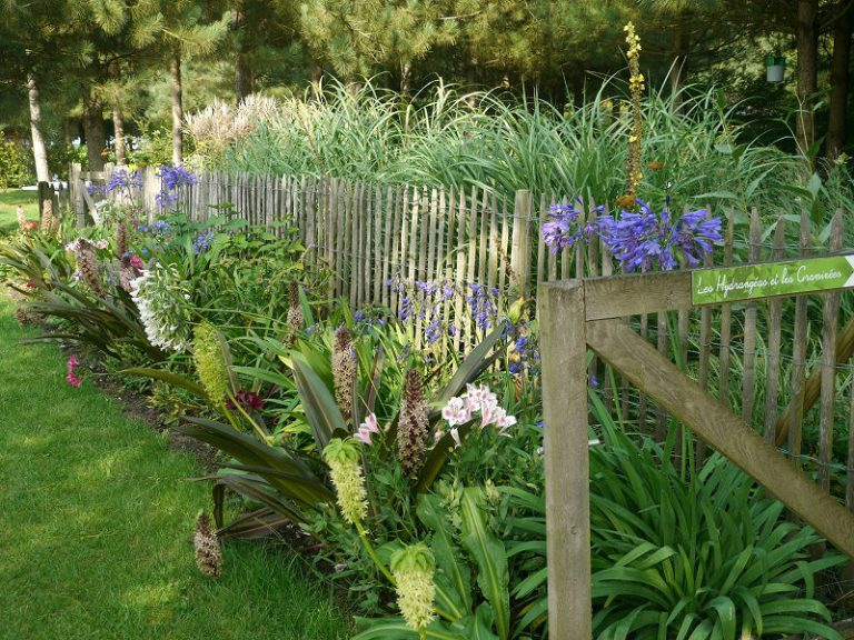Le Jardin de Mireille en Touraine Angevine-4