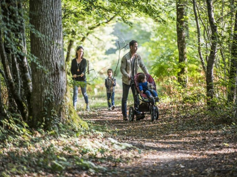 Labyrinthe de la Forêt de Tours-Preuilly-2