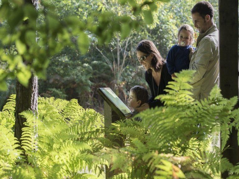 Labyrinthe de la Forêt de Tours-Preuilly-1