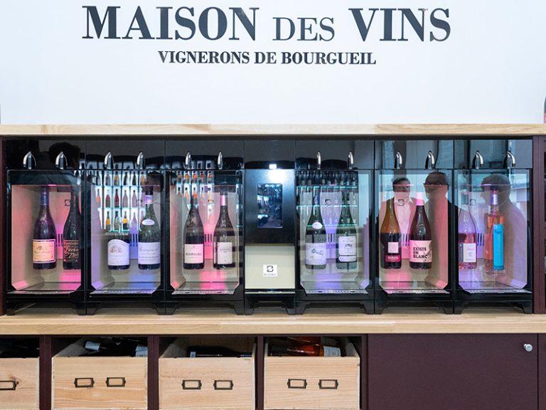 Maison des vins de Bourgueil à Langeais-5