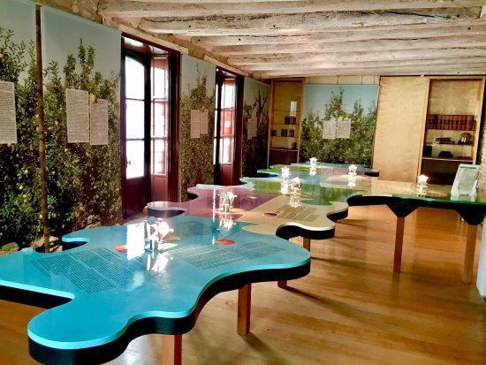 Maison Musée René Descartes-7