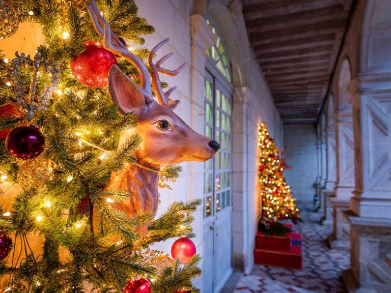 Noël en famille au cœur des jardins-8