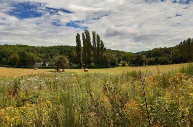 Randonnée de Saint-Ouen-les-Vignes – Vue sur la vallée de la Ramberge